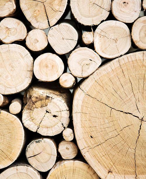 la-madera-1